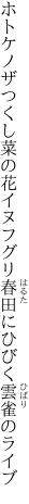 ホトケノザつくし菜の花イヌフグリ 春田にひびく雲雀のライブ