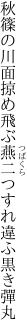 秋篠の川面掠め飛ぶ燕二つ すれ違ふ黒き彈丸