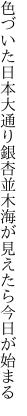 色づいた日本大通り銀杏並木 海が見えたら今日が始まる
