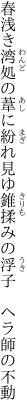 春浅き湾処の葦に紛れ見ゆ 錐揉みの浮子 ヘラ師の不動
