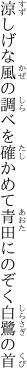 涼しげな風の調べを確かめて 青田にのぞく白鷺の首