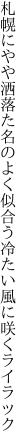札幌にやや洒落た名のよく似合う 冷たい風に咲くライラック